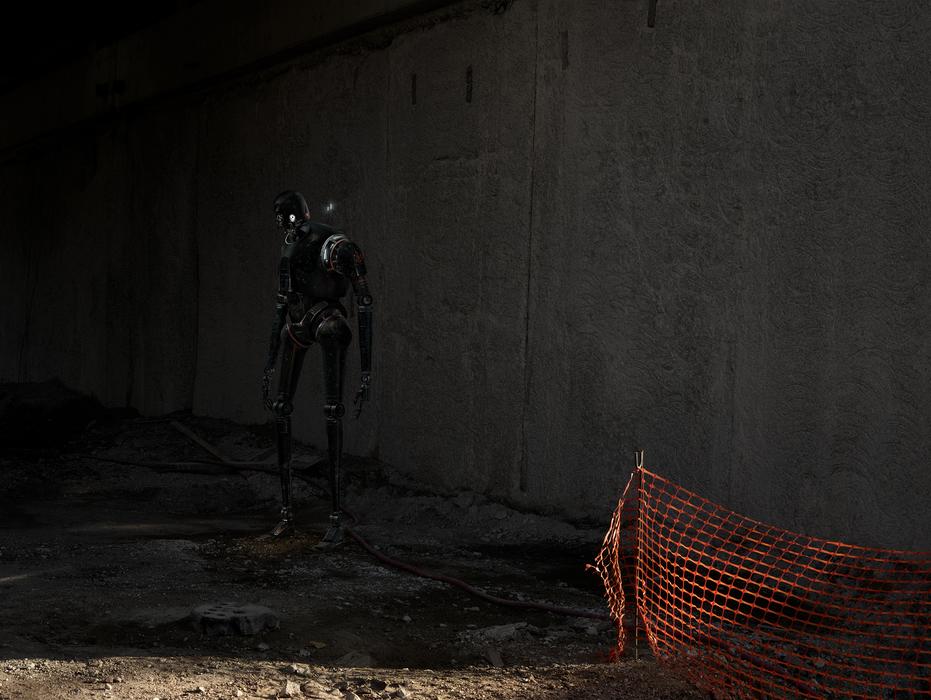 cedric delsaux in shadow