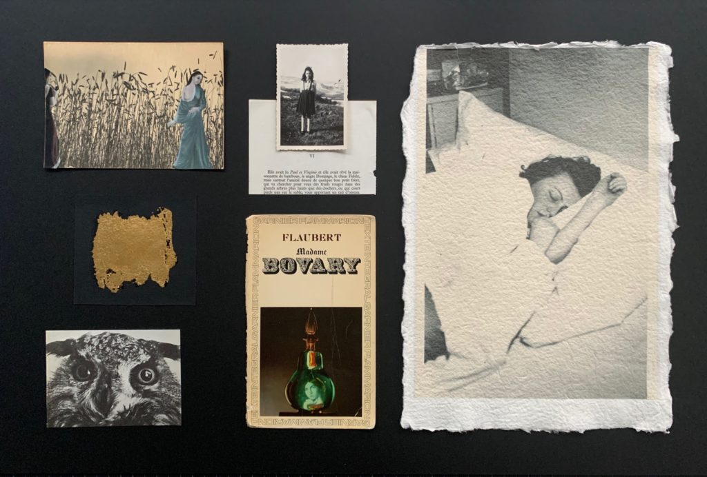 Collage photo Michaux bovary