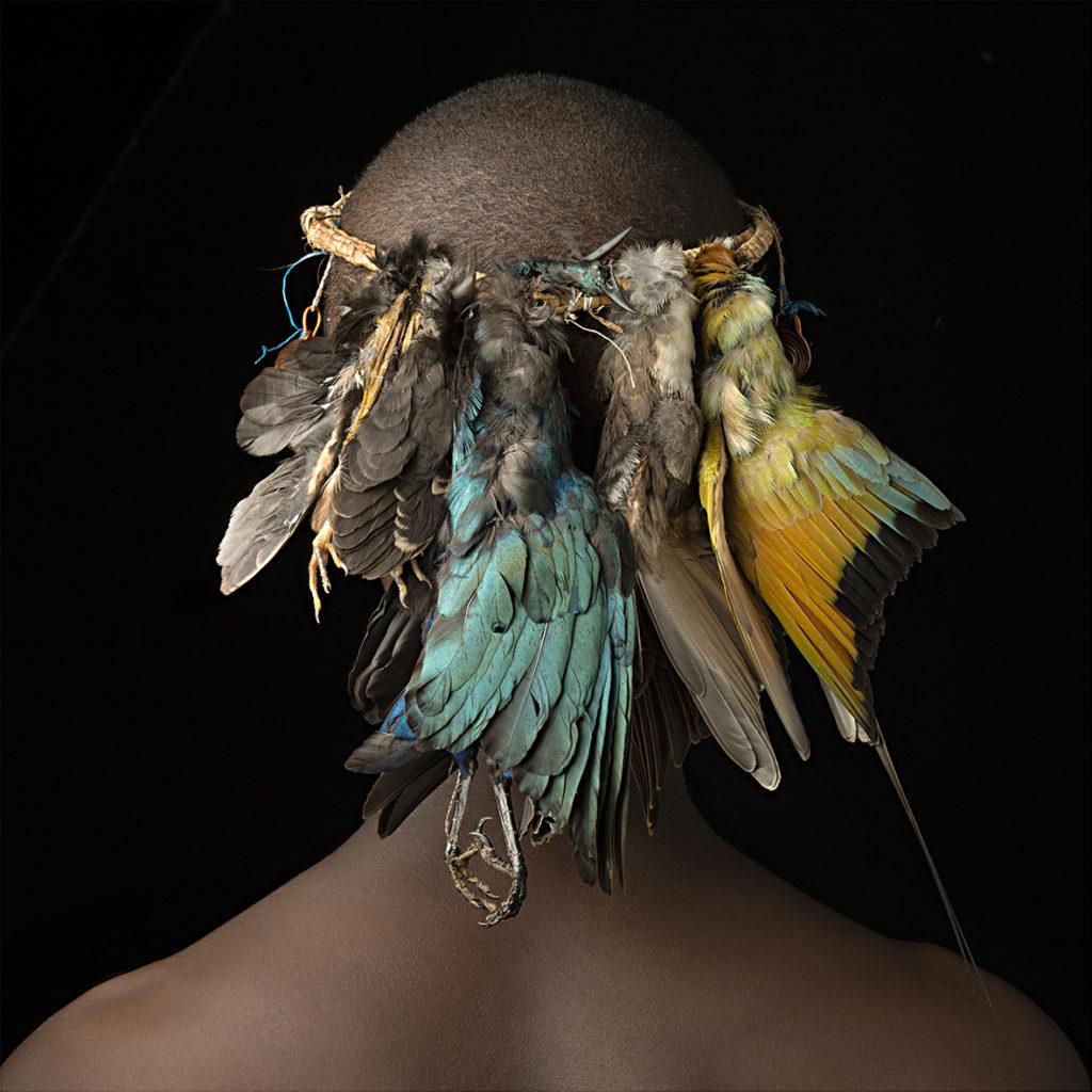 Photo Feathers Kenya Huynh