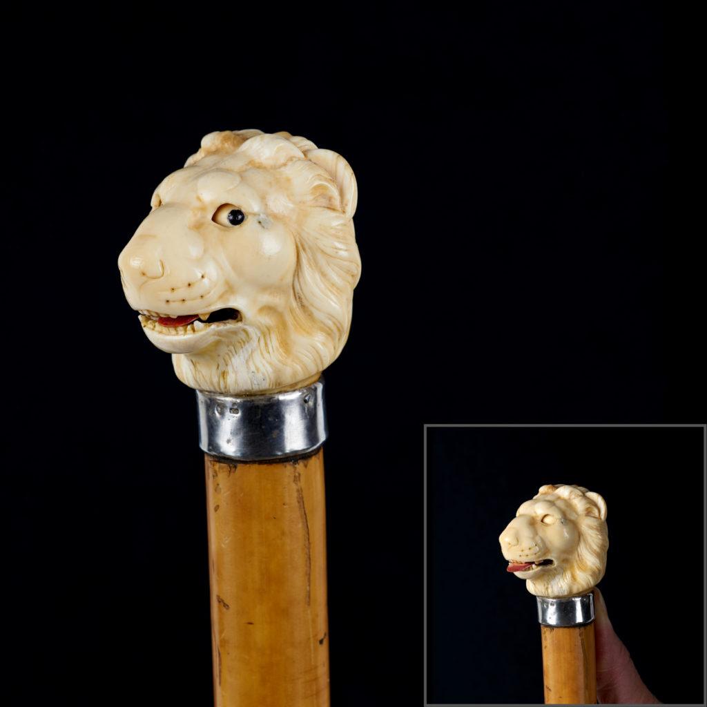 Canne à tête de lion automate en ivoire